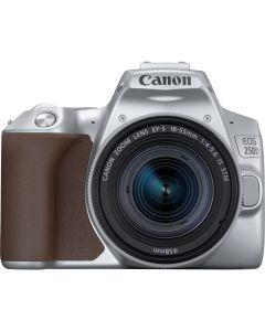 Canon EOS 250D DSLR Camera & 18-55mm IS STM Lens Kit (Silver)