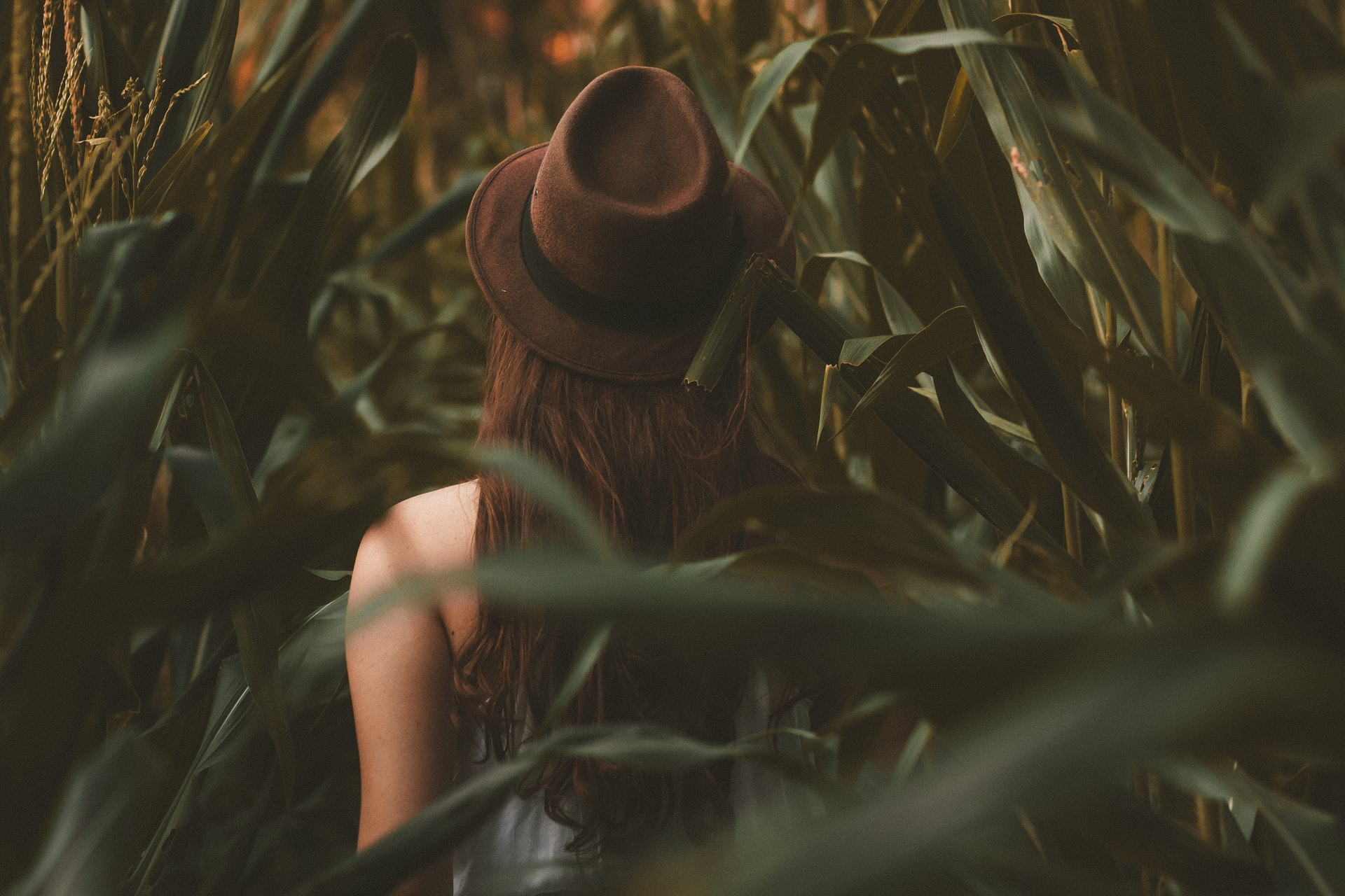 storytelling photo: person wearing hat walks away from camera through long grass