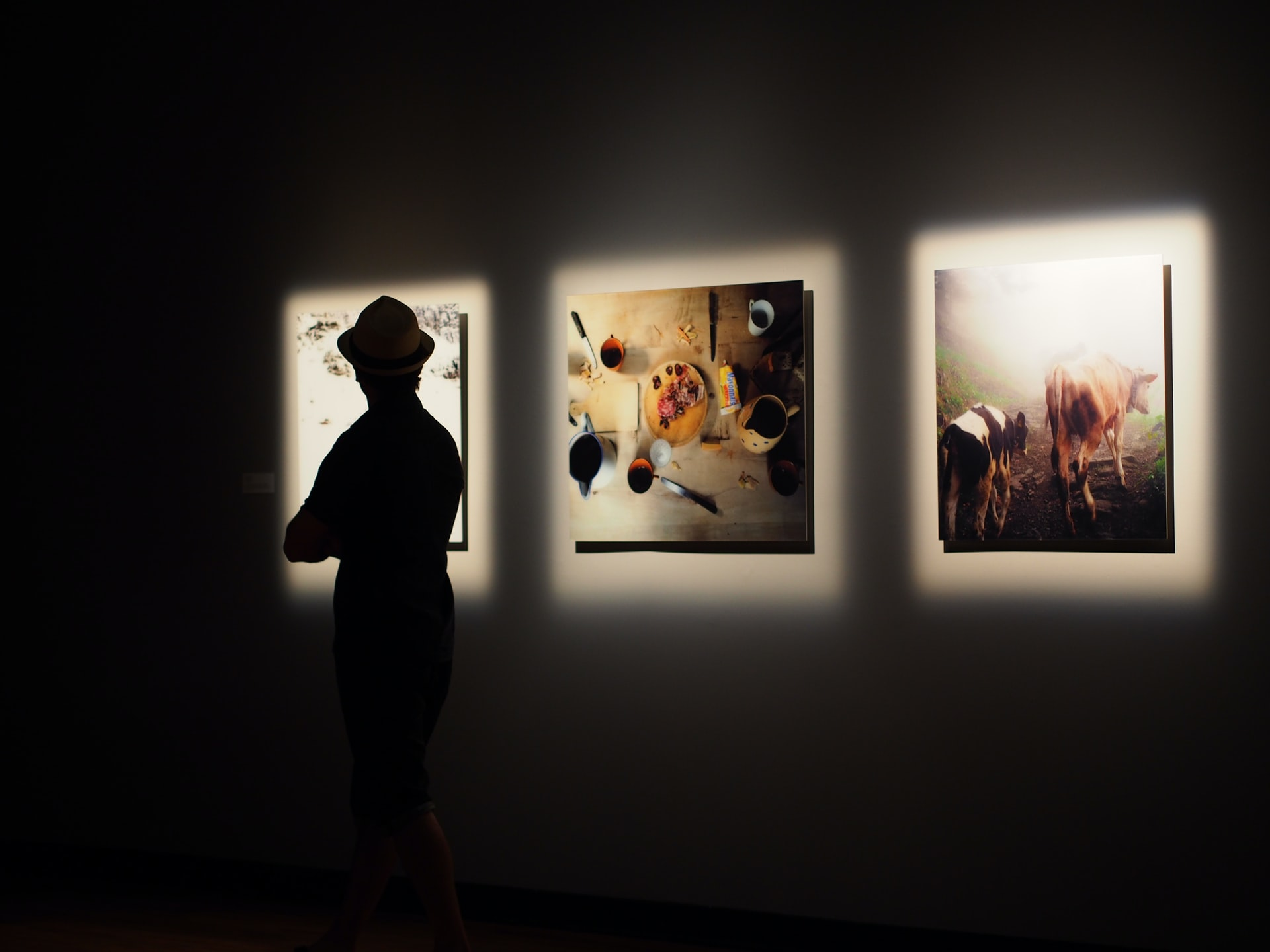 person observing paintings highlighted on a dark wall